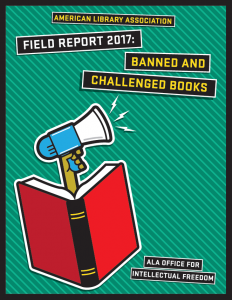 Cover of the 2018 Field Report, featuring a red open book with a blue megaphone coming out of it.